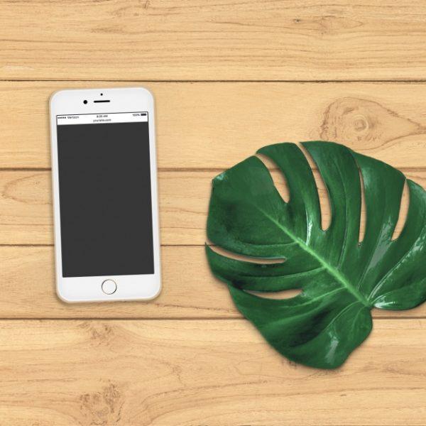 iOS development in thrissur