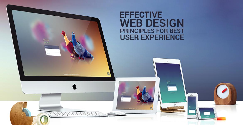 Web Designing Companies in Kerala
